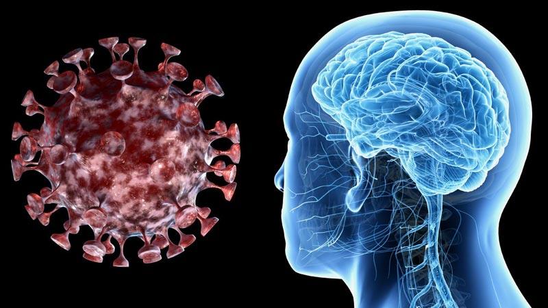 24 mentiras sobre el coronavirus que debes saber